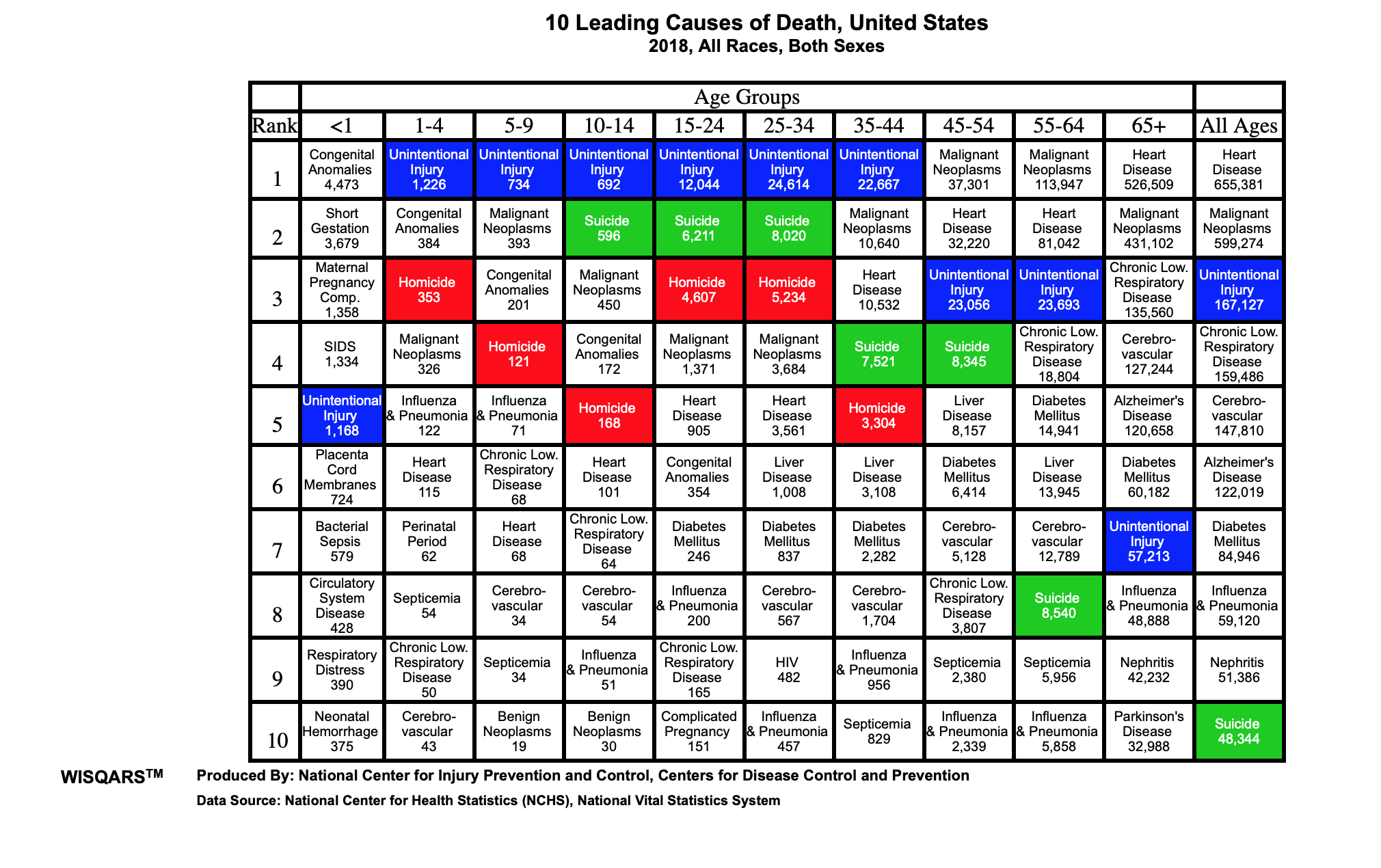 2018 Stats from CDC for 10 Leading Causes of Death in US to educate readers